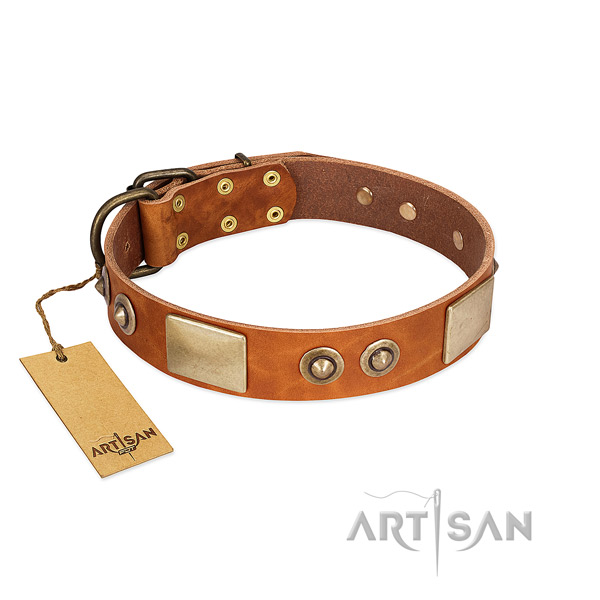 Easy wearing full grain natural leather dog collar for everyday walking your canine