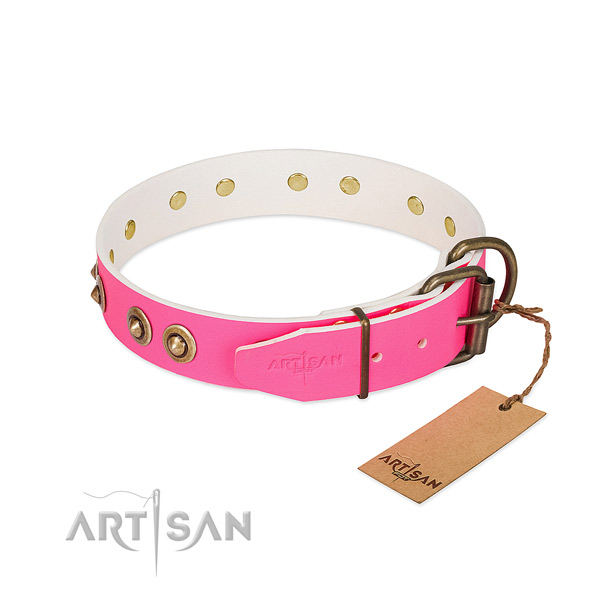 Full grain leather dog collar with reliable buckle and decorations
