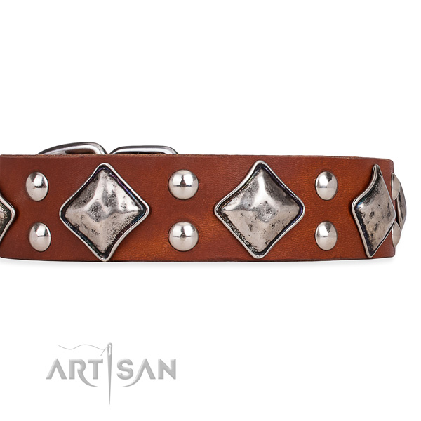 Full grain natural leather dog collar with unusual durable adornments