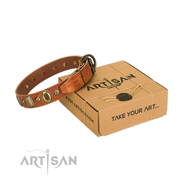 Top notch full grain leather dog collar with rust-proof D-ring