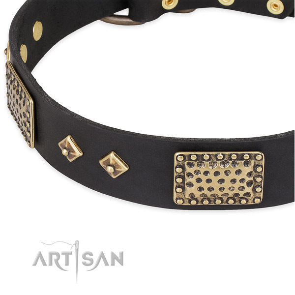 Reliable embellishments on full grain natural leather dog collar for your pet