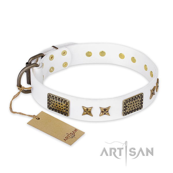 Adjustable full grain natural leather dog collar with strong fittings