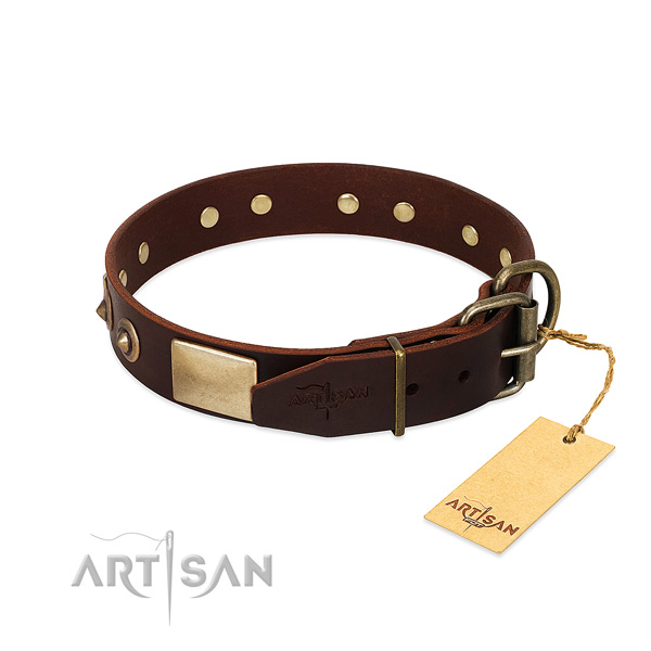 Durable buckle on basic training dog collar