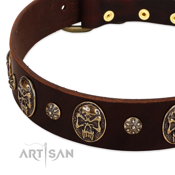 Corrosion resistant fittings on genuine leather dog collar for your four-legged friend