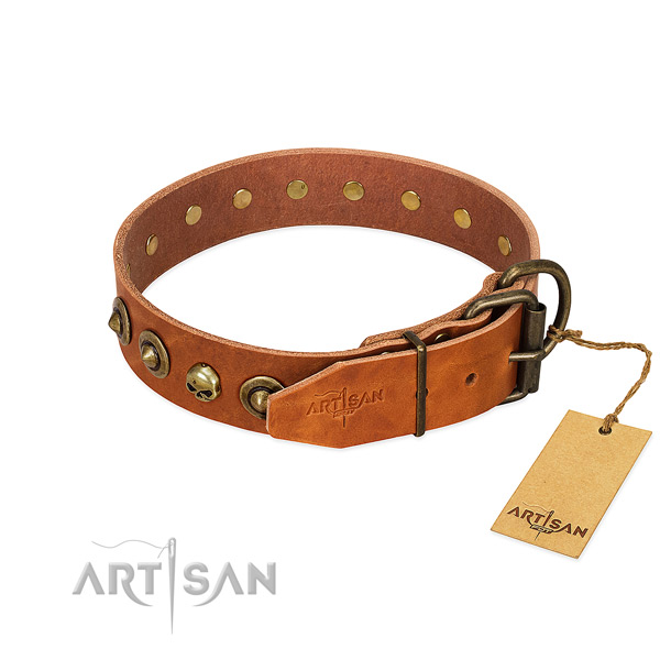Full grain genuine leather collar with amazing adornments for your dog