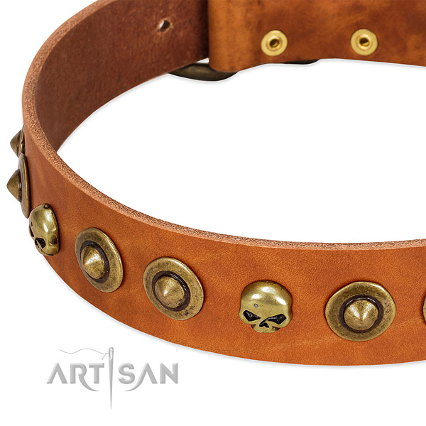 Exceptional studs on full grain genuine leather collar for your pet