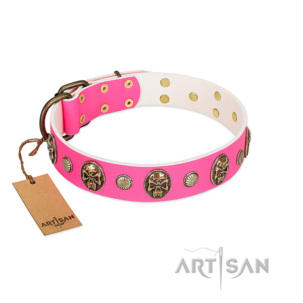 Rust resistant adornments on leather dog collar for your doggie