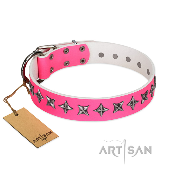 Top notch natural leather dog collar with unique adornments