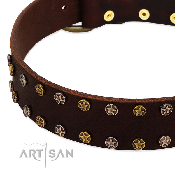 Everyday use natural leather dog collar with stylish decorations