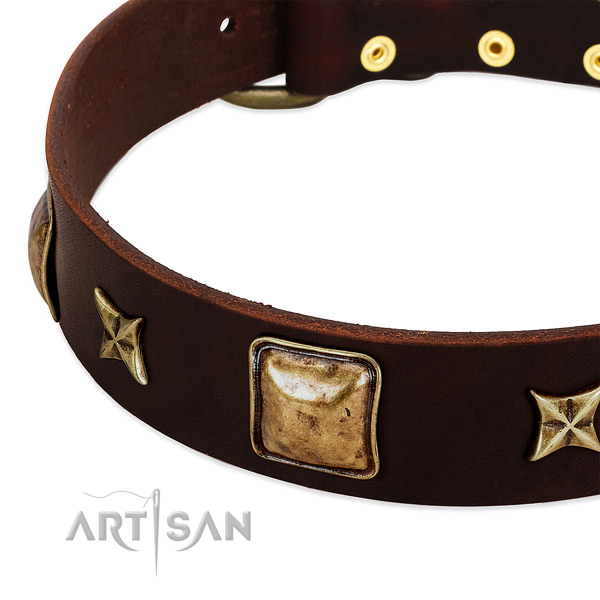 Corrosion proof studs on natural genuine leather dog collar for your doggie
