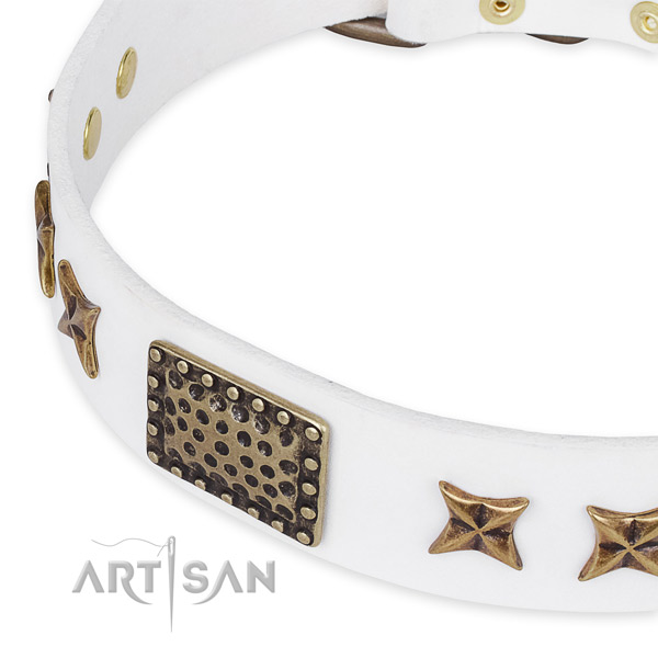 Full grain leather collar with reliable buckle for your lovely doggie