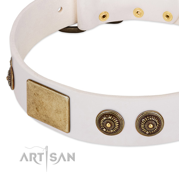 Top quality dog collar handcrafted for your lovely canine