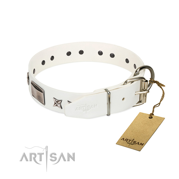 Exceptional collar of natural leather for your beautiful dog