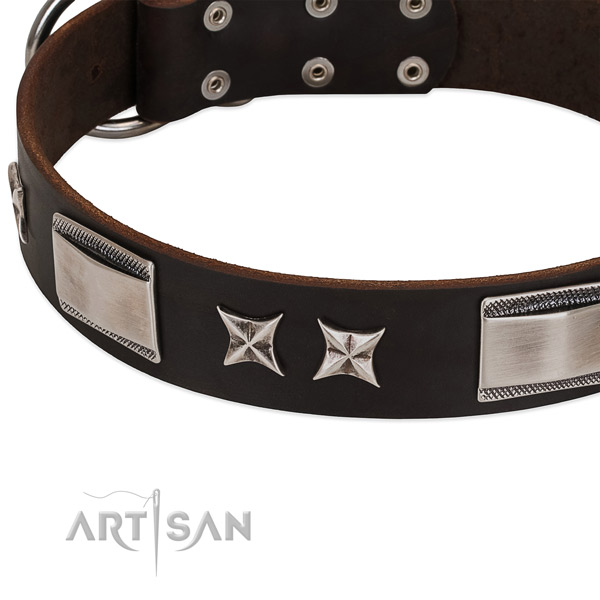 Soft full grain genuine leather dog collar with reliable fittings