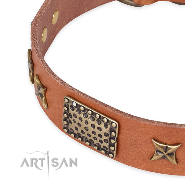 Natural genuine leather collar with rust resistant fittings for your handsome four-legged friend