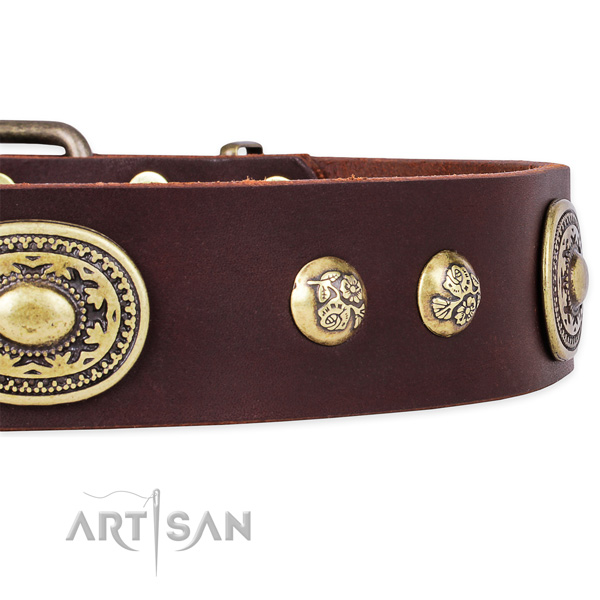 Unusual genuine leather collar for your stylish doggie