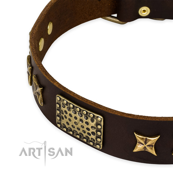 Full grain leather collar with corrosion resistant fittings for your handsome pet