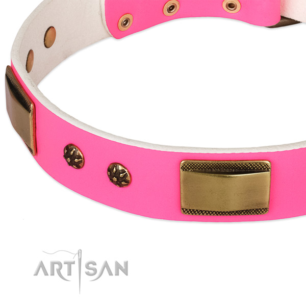 Corrosion resistant traditional buckle on leather dog collar for your doggie