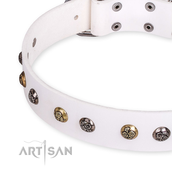 Full grain natural leather dog collar with exquisite corrosion proof decorations