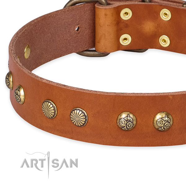 Full grain genuine leather collar with reliable traditional buckle for your stylish pet
