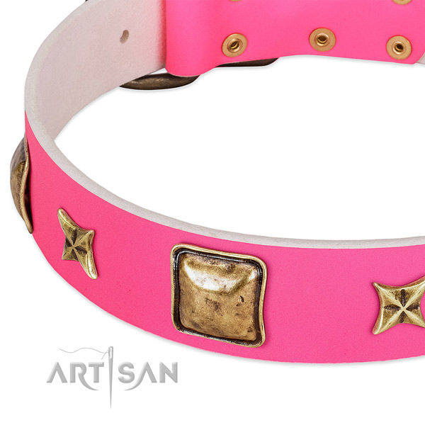 Natural leather dog collar with trendy embellishments