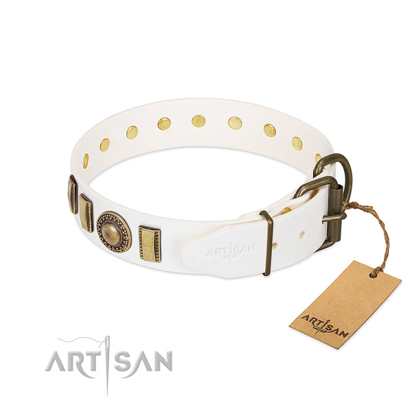 Amazing full grain natural leather dog collar with strong fittings