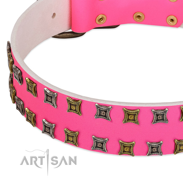 Full grain leather dog collar with unique decorations