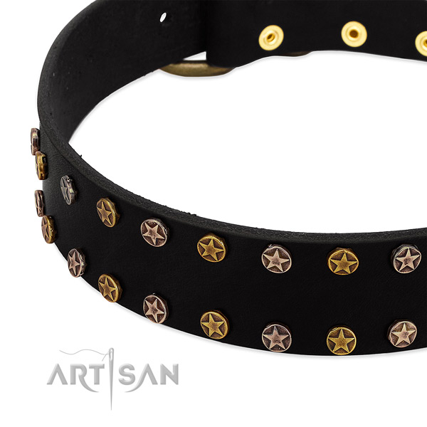 Fashionable adornments on genuine leather collar for your four-legged friend