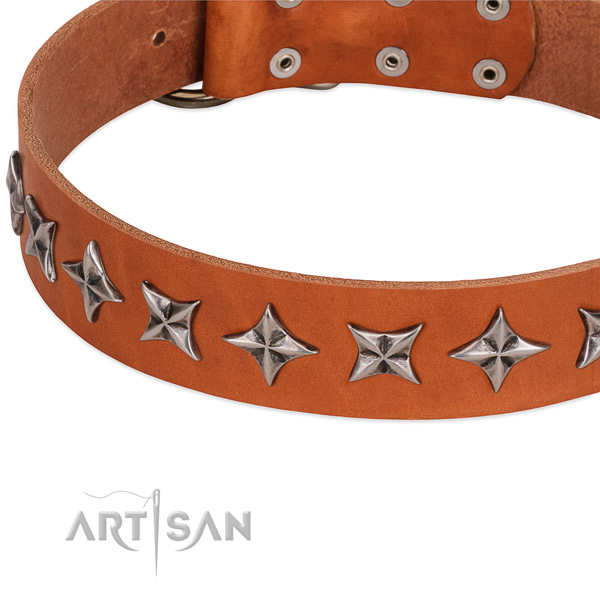 Handy use adorned dog collar of quality natural leather