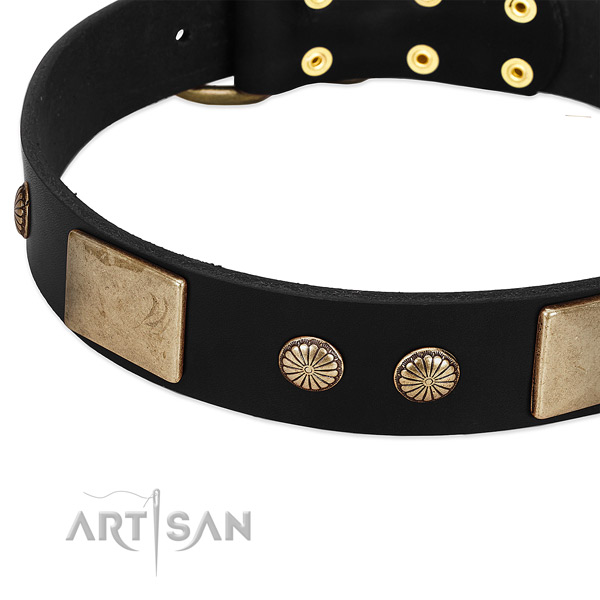 Genuine leather dog collar with adornments for walking