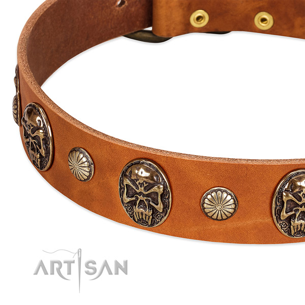 Strong hardware on full grain genuine leather dog collar for your four-legged friend