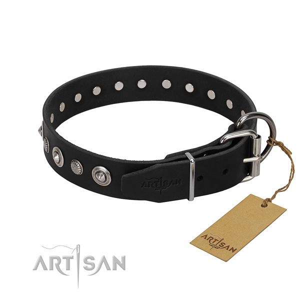 Quality leather dog collar with unique decorations
