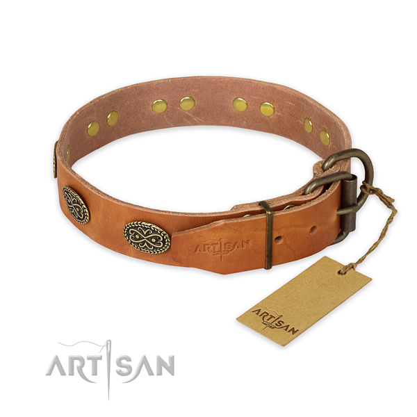 Strong fittings on full grain natural leather collar for fancy walking your canine