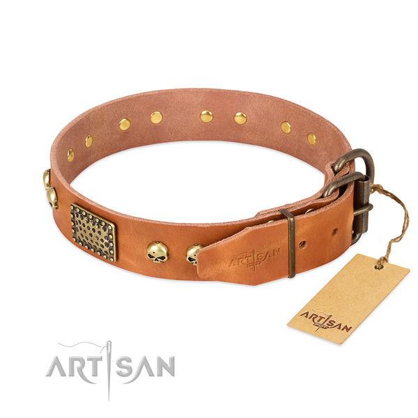 Durable buckle on handy use dog collar