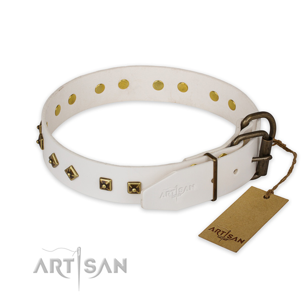 Durable fittings on leather collar for daily walking your canine