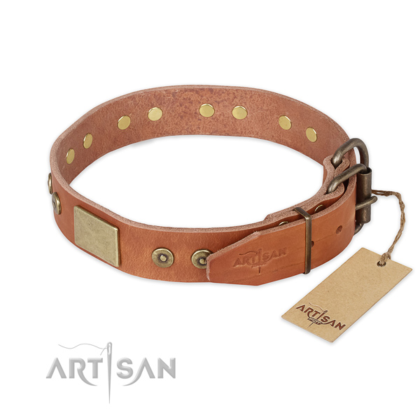 Durable fittings on full grain leather collar for walking your doggie