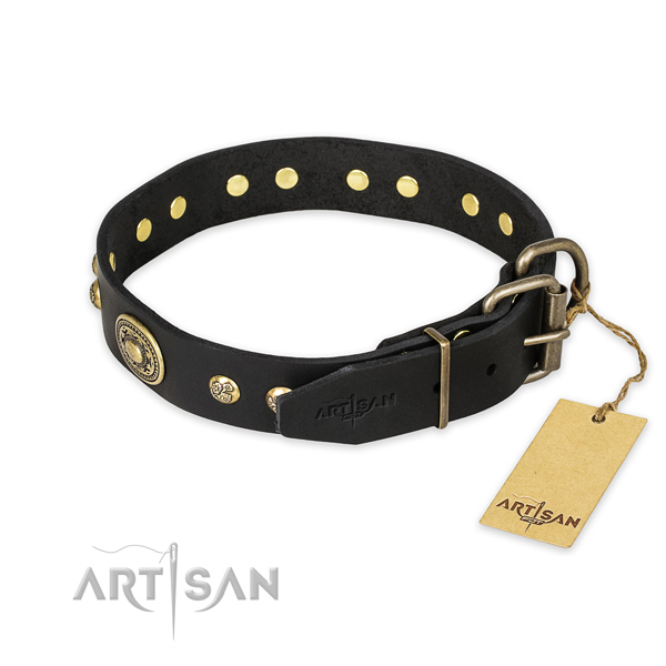 Reliable fittings on full grain natural leather collar for stylish walking your dog