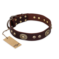 """Breath of Elegance"" FDT Artisan Decorated with Plates Brown Leather Belgian Malinois Collar"