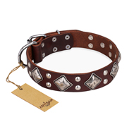 """King of Grace"" FDT Artisan Stylish Leather Belgian Malinois Collar with Old Silver-Like Plated Decorations"