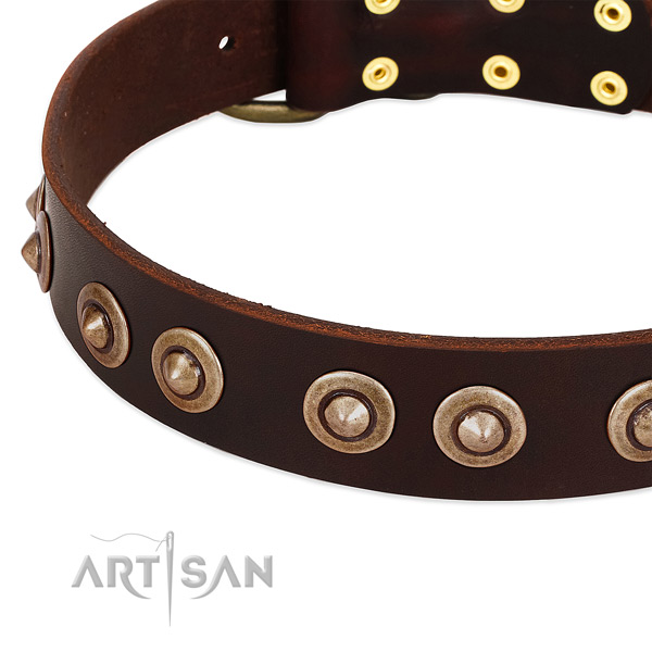 Strong D-ring on natural genuine leather dog collar for your canine