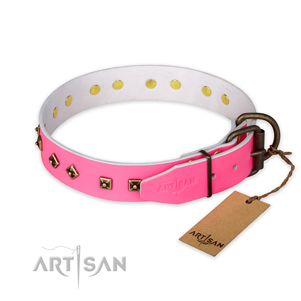 Corrosion proof fittings on full grain leather collar for daily walking your dog