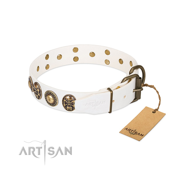 Rust-proof fittings on easy wearing dog collar