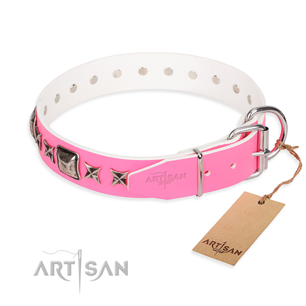Durable studded dog collar of full grain leather