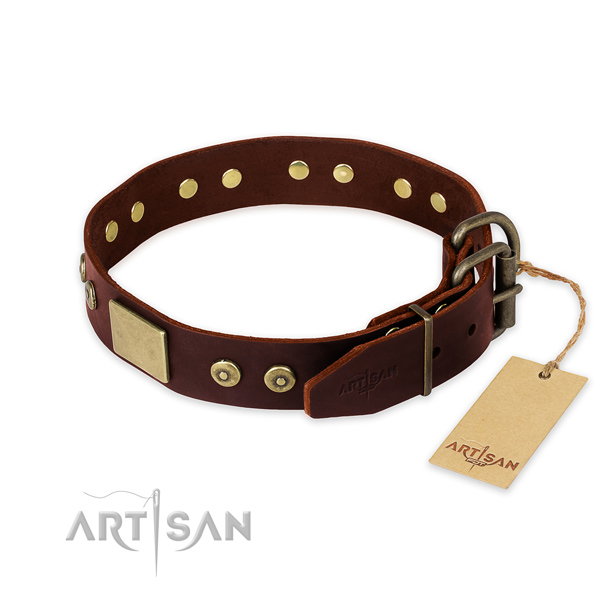 Corrosion proof adornments on easy wearing dog collar