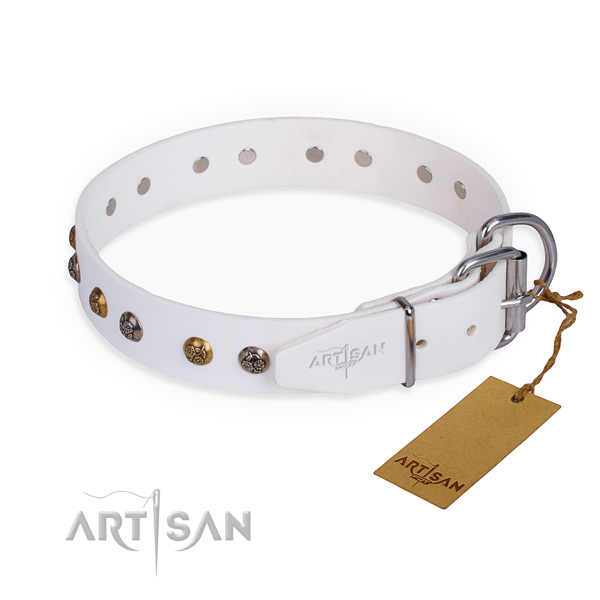 Full grain leather dog collar with exceptional durable decorations