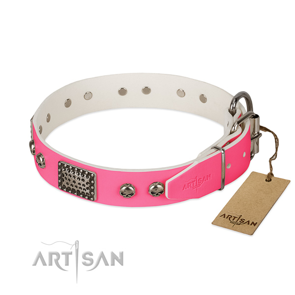 Durable D-ring on everyday walking dog collar