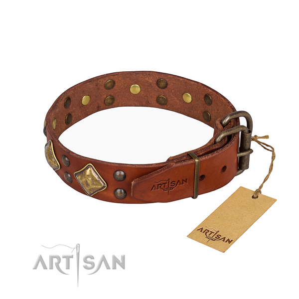 Full grain natural leather dog collar with extraordinary durable adornments