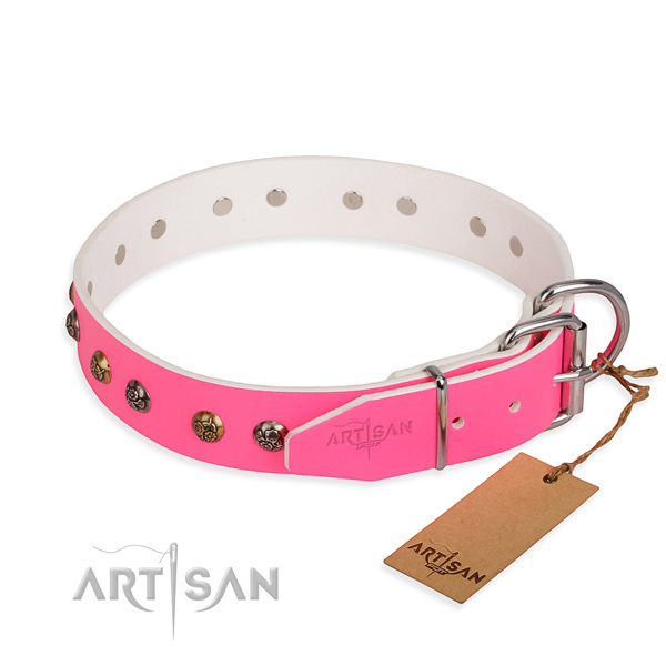 Full grain genuine leather dog collar with trendy corrosion resistant adornments