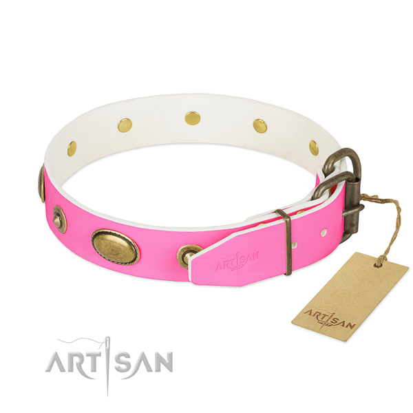 Corrosion resistant buckle on leather dog collar for your pet