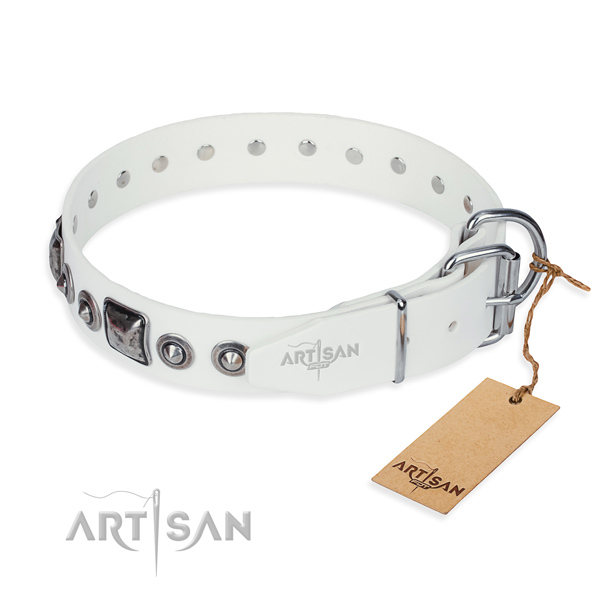 Best quality full grain leather dog collar created for stylish walking